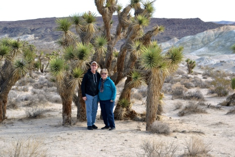 Joshua trees are the foremost form of vegetation on the Mojave Desert.