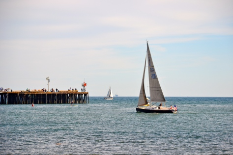 A sailboat leaves the harbor and heads out to sea.