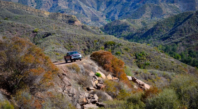 Where the Robert Leaves the Road – a day in the National Forest