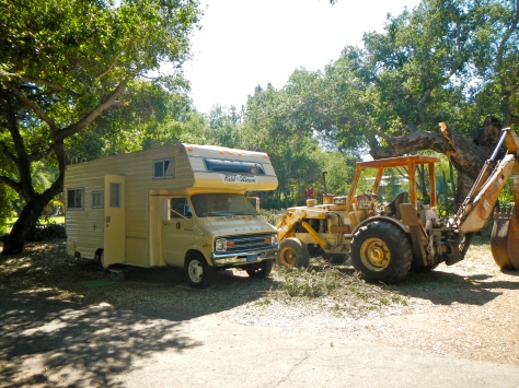 The 1976 Dodge motorhome emerged from under the tree with only one broken window.