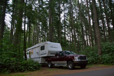 Our campsite in the tall trees near Olympia, WA.