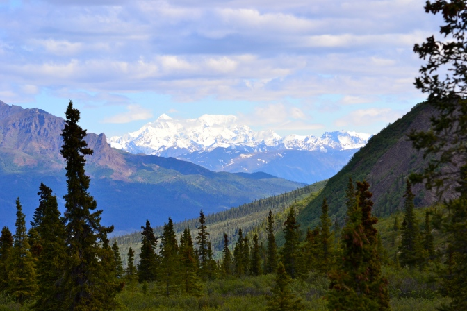 The Alaska Vibe
