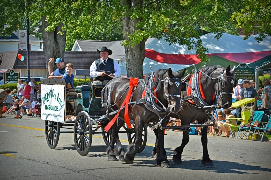 My friend, Doug Kramer, drives his horses and carriage at several town festivals in the summer.