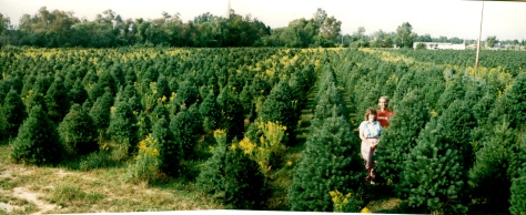 Our 30-acre Christmas tree farm required a LOT of mowing, and that was just the beginning. of it.