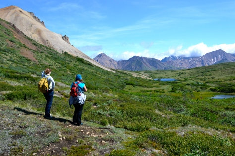 I hiked the backcountry at Denali - where my youngest daughter lives and works every summer.