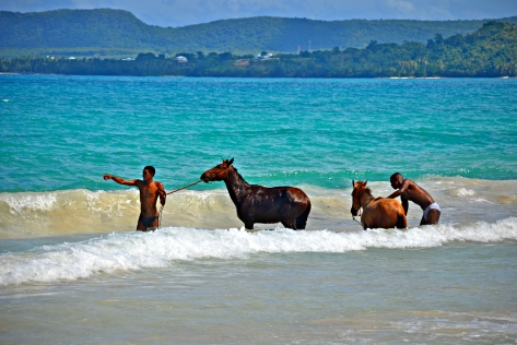 I shot these guys washing their horses in the ocean 3 years ago...