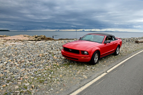 Bass Harbor seashore drive