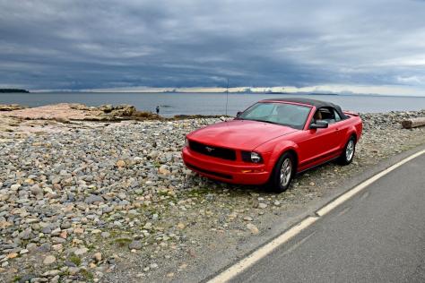 Bass Harbor seashore drive
