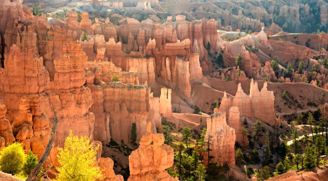 Bryce Canyon is Hoodoo Central