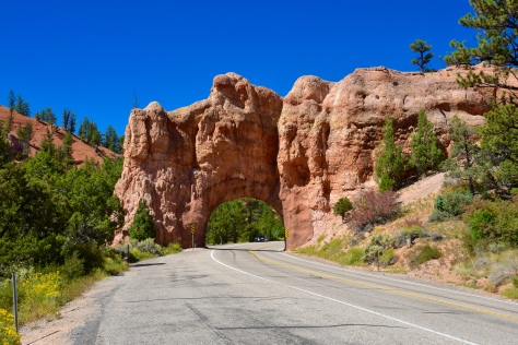 Visitors from the west will drive through two tunnels on highway 12 before arriving at Bryce Canyon.