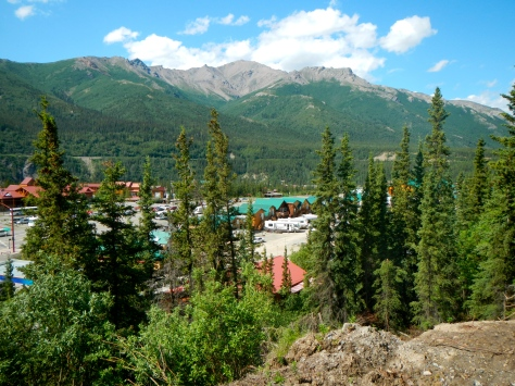 Our campsite was nestled behind the log cabin shops near the entrance of Denali National Park.